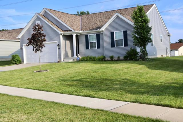5678 Queen Victoria Street, Groveport, OH 43125 (MLS #219022847) :: Exp Realty