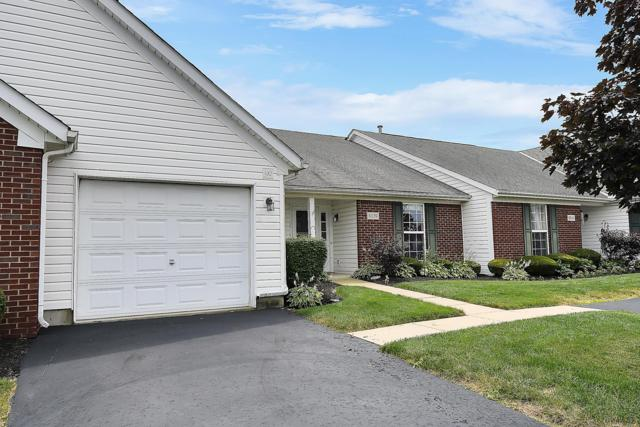 8039 Ivory Gull Circle, Pickerington, OH 43147 (MLS #219024674) :: The Raines Group