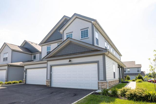 5840 Yellowfin Lane, Lewis Center, OH 43035 (MLS #219025263) :: Keith Sharick | HER Realtors