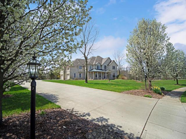 7305 Optimara Drive, Pickerington, OH 43147 (MLS #219026122) :: CARLETON REALTY