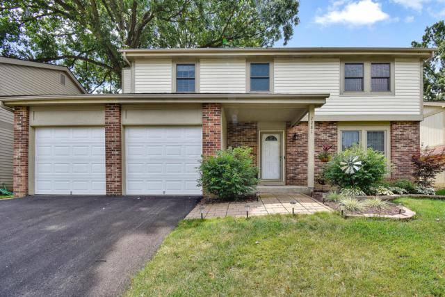 2281 Benning Drive, Powell, OH 43065 (MLS #219026172) :: Signature Real Estate