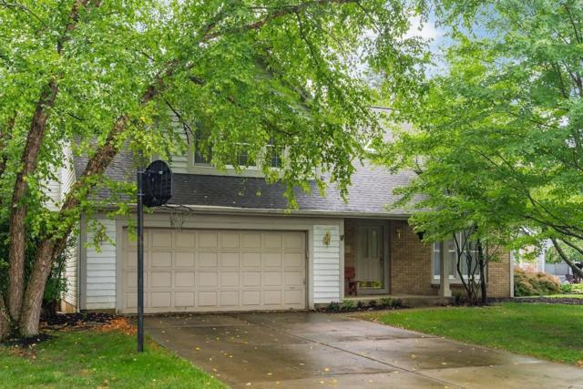 459 Meadow View Drive, Powell, OH 43065 (MLS #219027003) :: RE/MAX ONE