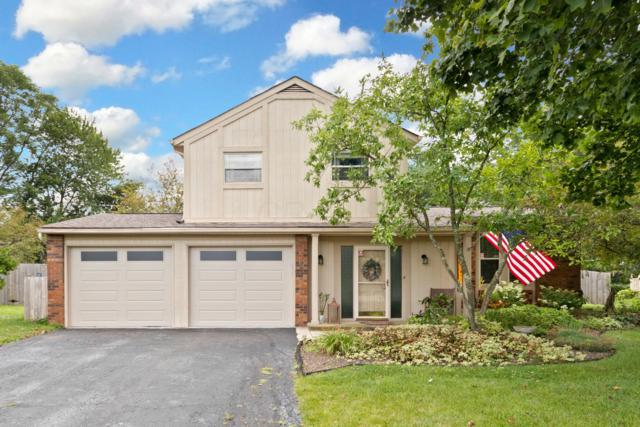 11960 Huntington Way, Pickerington, OH 43147 (MLS #219027692) :: Signature Real Estate