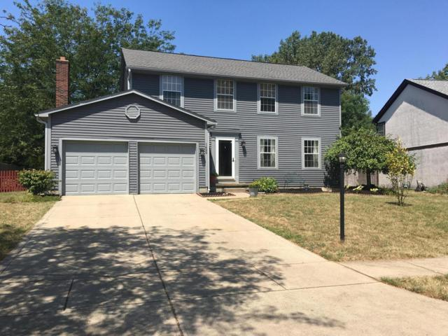 1429 River Trail Drive, Grove City, OH 43123 (MLS #219028905) :: The Raines Group