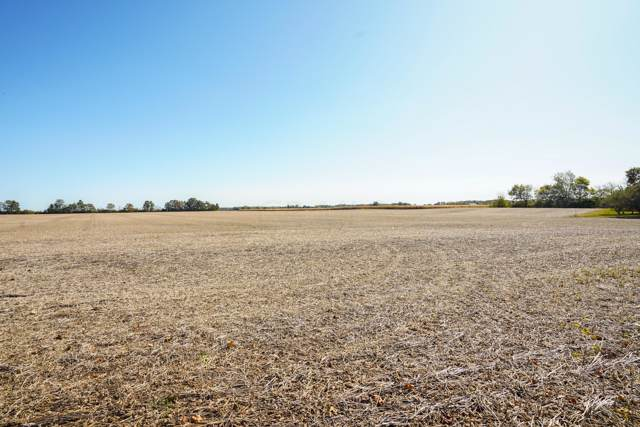 0 Horseshoe Road Lot #2, Delaware, OH 43015 (MLS #219035152) :: RE/MAX ONE