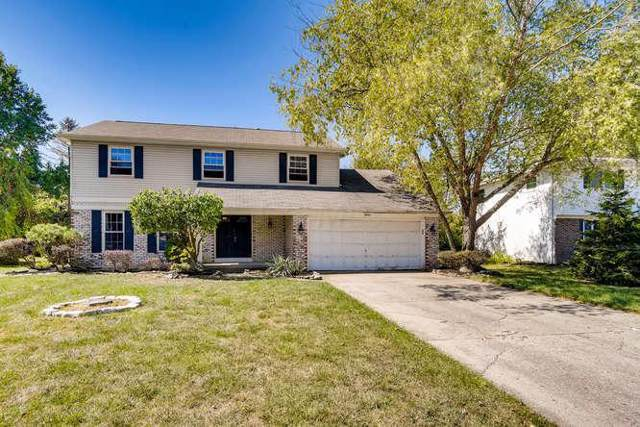8401 Evangeline Drive, Columbus, OH 43235 (MLS #219035431) :: Brenner Property Group | Keller Williams Capital Partners