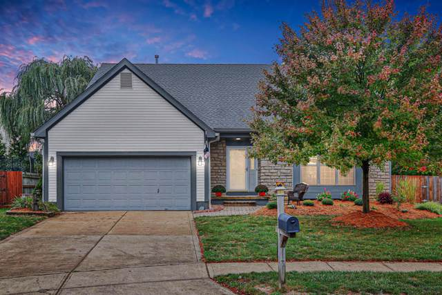 7567 Ladywell Court, Worthington, OH 43085 (MLS #219038430) :: Core Ohio Realty Advisors