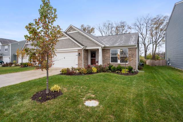 3780 Winding Path Drive, Canal Winchester, OH 43110 (MLS #219039822) :: Core Ohio Realty Advisors