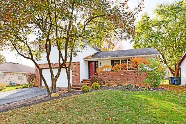 5951 Central Park Drive, Columbus, OH 43231 (MLS #219040732) :: Huston Home Team