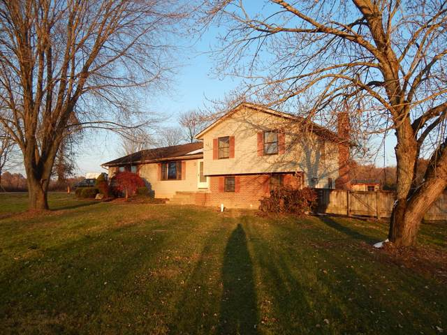 2900 N Old State Road, Delaware, OH 43015 (MLS #219042584) :: The Clark Group @ ERA Real Solutions Realty