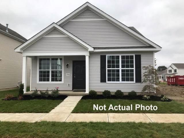 1989 Edison Street, Newark, OH 43055 (MLS #219045869) :: Signature Real Estate