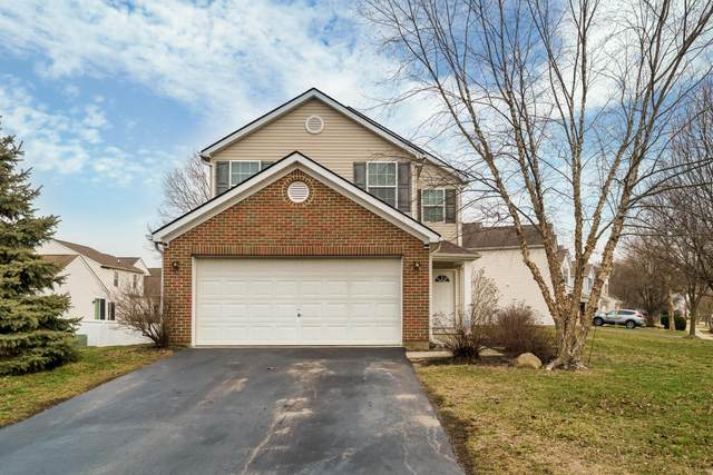 1982 Schrive Drive, Hilliard, OH 43026 (MLS #220004927) :: RE/MAX Metro Plus