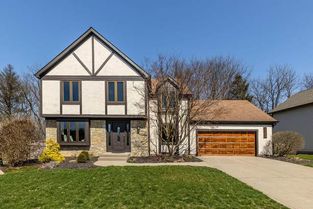 5805 Clear Stream Way, Westerville, OH 43081 (MLS #220010348) :: Exp Realty