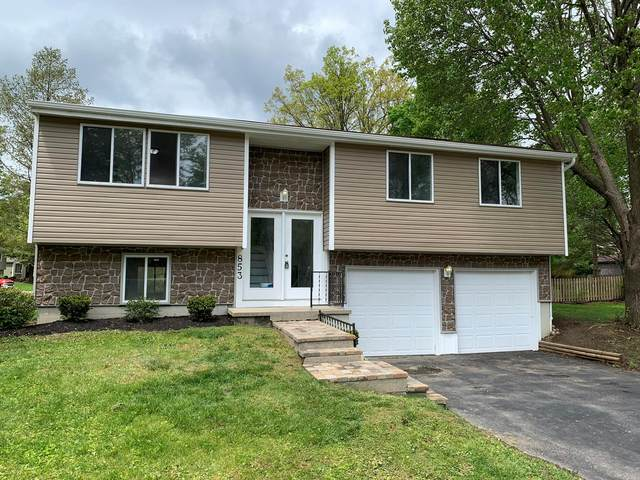 853 Ridenour Road, Gahanna, OH 43230 (MLS #220015003) :: Exp Realty