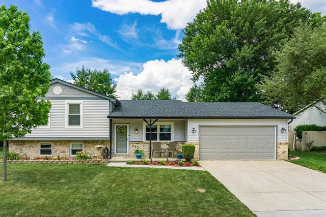 440 Sandburr Drive, Gahanna, OH 43230 (MLS #220020269) :: The Jeff and Neal Team | Nth Degree Realty