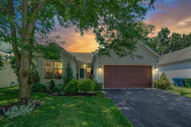 1508 Meadowlark Lane, Marysville, OH 43040 (MLS #220022179) :: Susanne Casey & Associates