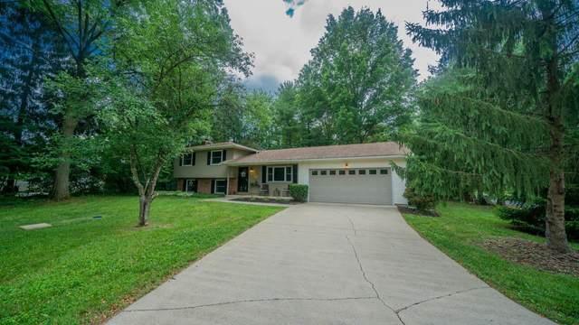 8101 Morse Road, New Albany, OH 43054 (MLS #220022233) :: Angel Oak Group