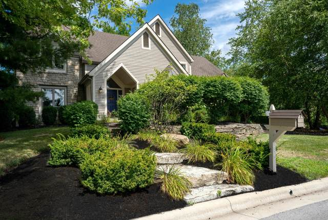 239 Lake Bluff Drive, Columbus, OH 43235 (MLS #220022696) :: Dublin Realty Group