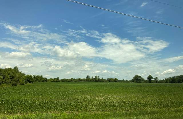 00 Palmer Road SW, Pataskala, OH 43062 (MLS #220023985) :: The Holden Agency
