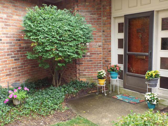 1501 Lafayette Drive, Columbus, OH 43220 (MLS #220025728) :: The Willcut Group
