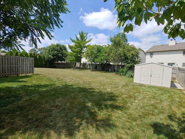 5687 Pauley Court, Columbus, OH 43235 (MLS #220027351) :: 3 Degrees Realty