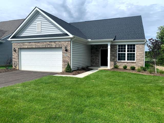 5844 Blanton Drive, Westerville, OH 43081 (MLS #220031807) :: The Willcut Group