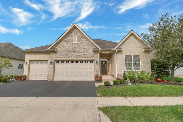 6034 Tournament Drive, Westerville, OH 43082 (MLS #220032568) :: Jarrett Home Group