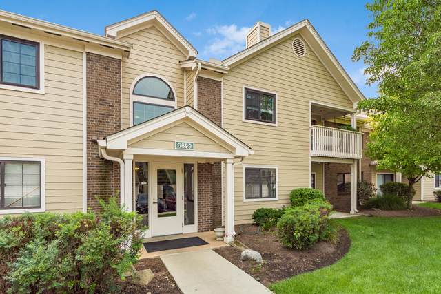 6699 Meadow Creek Drive #103, Columbus, OH 43235 (MLS #220032676) :: RE/MAX Metro Plus