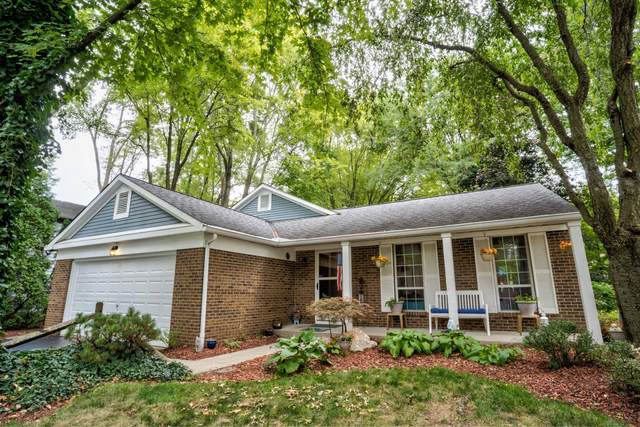 6080 Carnation Drive, Westerville, OH 43081 (MLS #220033396) :: RE/MAX ONE