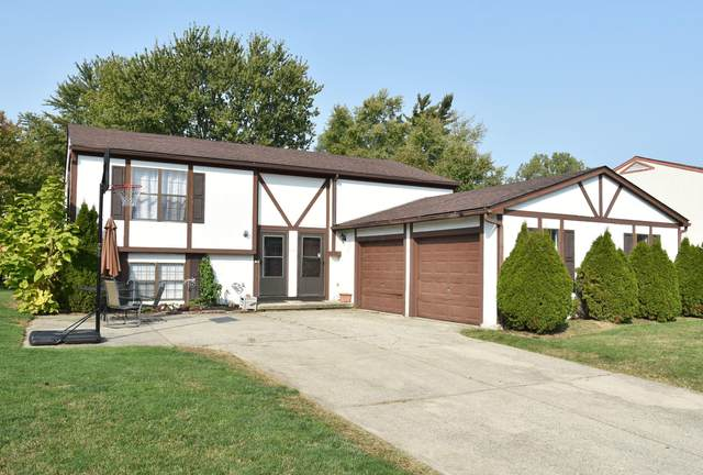 7565 Bella Drive, Worthington, OH 43085 (MLS #220033896) :: The Willcut Group