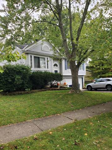 7342 Schoolcraft Lane, Columbus, OH 43235 (MLS #220034143) :: Signature Real Estate