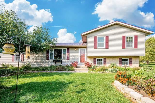 2850 Twp 20 Rd, Cardington, OH 43315 (MLS #220035032) :: MORE Ohio