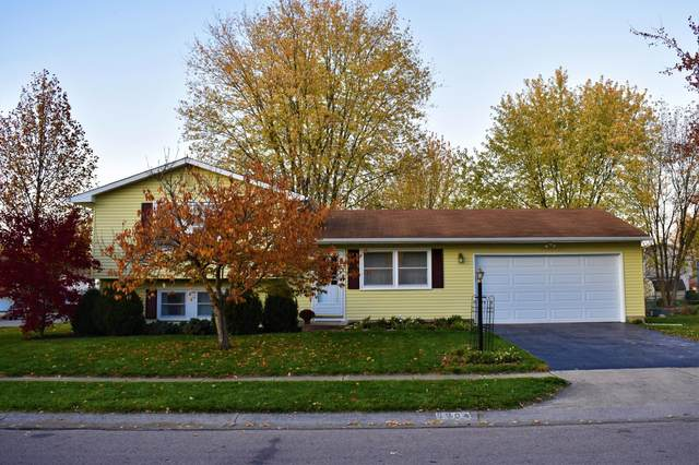 8904 Canoe Drive, Galloway, OH 43119 (MLS #220039441) :: MORE Ohio
