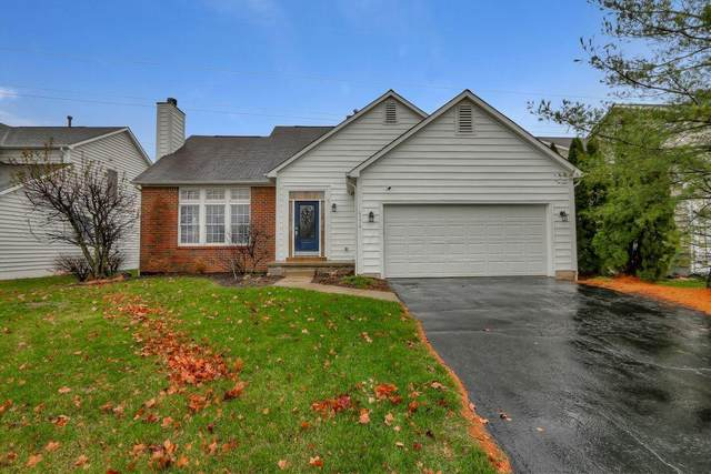 4774 Bosk Drive, New Albany, OH 43054 (MLS #220039545) :: RE/MAX ONE