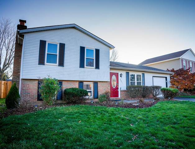 6071 Cork County Drive, Galloway, OH 43119 (MLS #220039912) :: Angel Oak Group