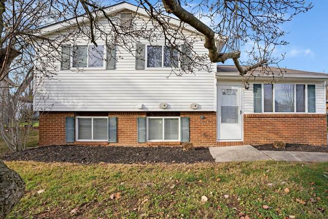 4531 Collingdale Road, Columbus, OH 43231 (MLS #220040458) :: Berkshire Hathaway HomeServices Crager Tobin Real Estate