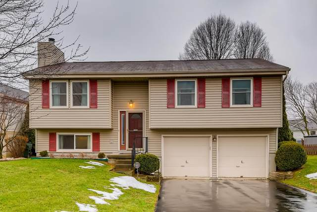 1583 Grayling Court, Columbus, OH 43235 (MLS #220044087) :: 3 Degrees Realty