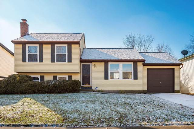 2145 Summer Breeze Drive, Columbus, OH 43223 (MLS #221001569) :: Signature Real Estate