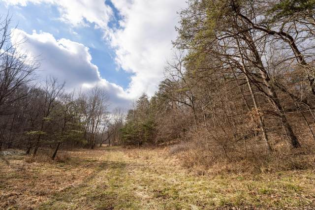 0 Harble-Griffith Road, Logan, OH 43138 (MLS #221002196) :: The Holden Agency