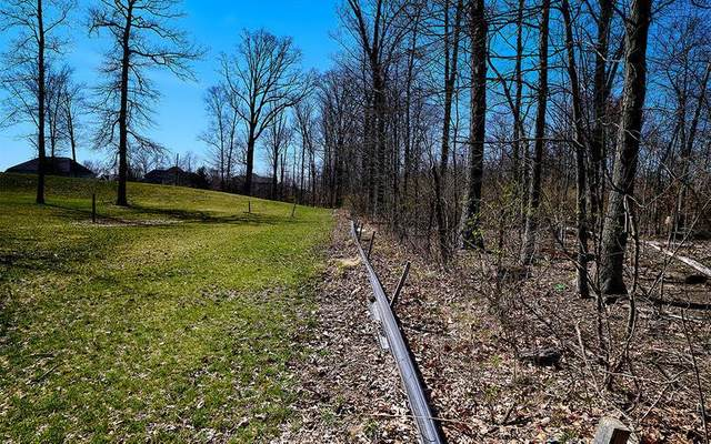 4327 Seldom Seen Road, Powell, OH 43065 (MLS #221002901) :: 3 Degrees Realty