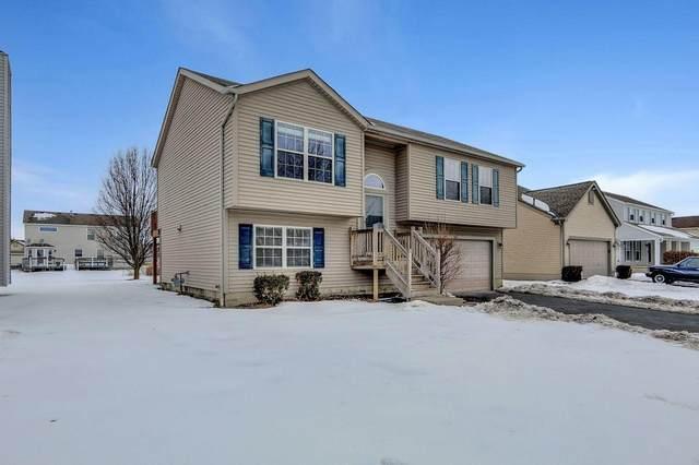 761 Sauter Lane, Blacklick, OH 43004 (MLS #221004946) :: Greg & Desiree Goodrich | Brokered by Exp