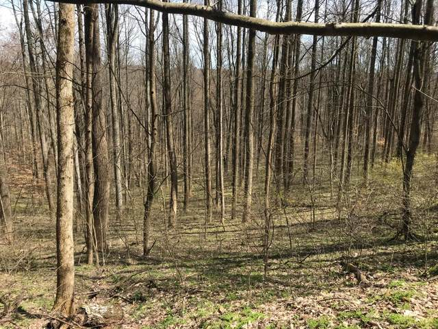 0 Trillium Way Lot 49, Rockbridge, OH 43149 (MLS #221005359) :: Jamie Maze Real Estate Group