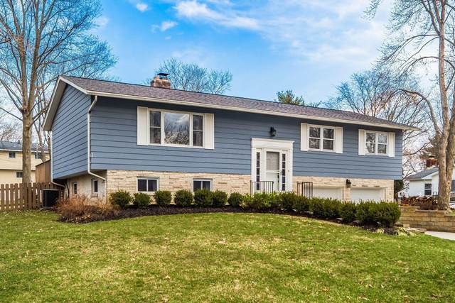 280 Apache Street, Westerville, OH 43081 (MLS #221006414) :: Bella Realty Group