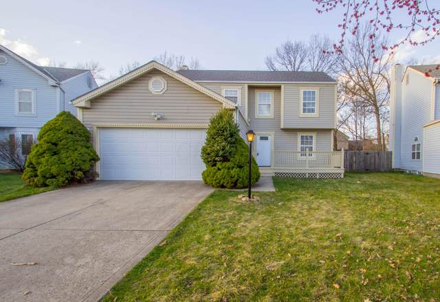 6146 Bay Brook Drive, Canal Winchester, OH 43110 (MLS #221008557) :: Bella Realty Group