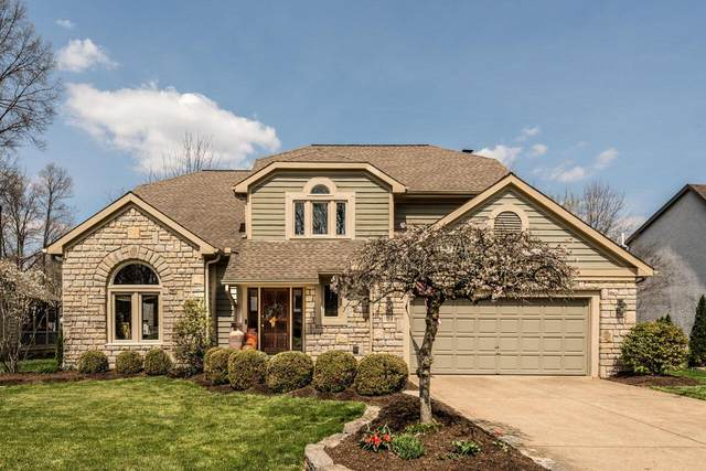 1194 Springtree Lane, Westerville, OH 43081 (MLS #221009300) :: MORE Ohio