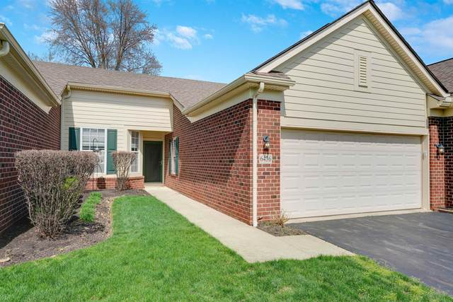 6436 Portrait Circle, Westerville, OH 43081 (MLS #221009313) :: Jamie Maze Real Estate Group