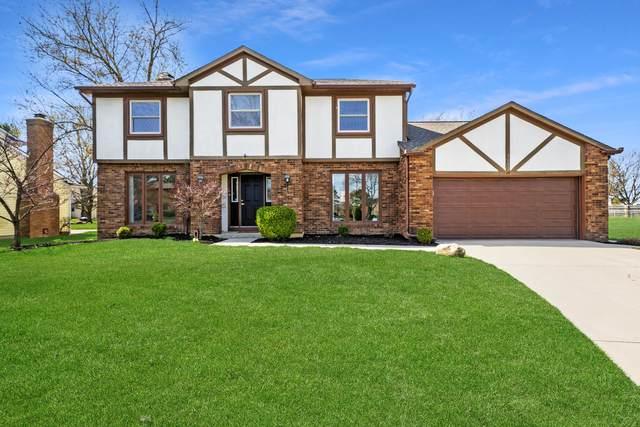 5647 Ramblewood Court, Columbus, OH 43235 (MLS #221009574) :: CARLETON REALTY