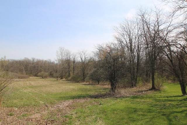 0 State Route 656, Sunbury, OH 43074 (MLS #221010522) :: Jamie Maze Real Estate Group