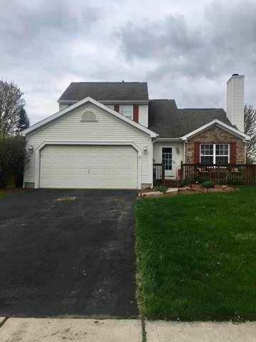 8663 Clarksdale Drive, Lewis Center, OH 43035 (MLS #221010986) :: RE/MAX Metro Plus