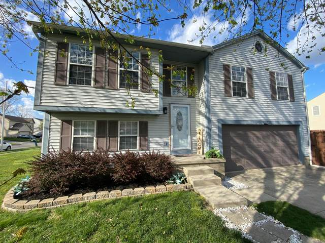 3384 Riegelwood Court, Columbus, OH 43204 (MLS #221011763) :: Jamie Maze Real Estate Group